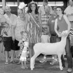 Wildermuth wins at State Fair