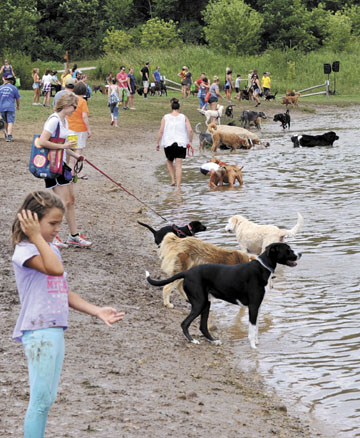 At Water Bark Beach, dogs were permitted off leash to enjoy one of the lakes at Praire Oaks Metro Park.