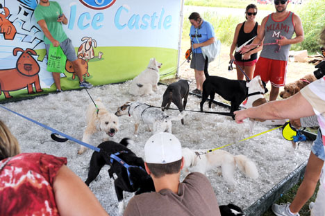 Kroger offered an Ice Castle tent where dogs could cool off.